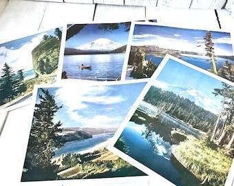 5 vintage landscape photo prints Pacific Northwest Oregon Washington Kodachrome color 10x8 framable 1960s/ free shipping US