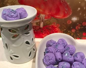 Moon Lake Musk  - Highly Fragranced Soy Wax Melts