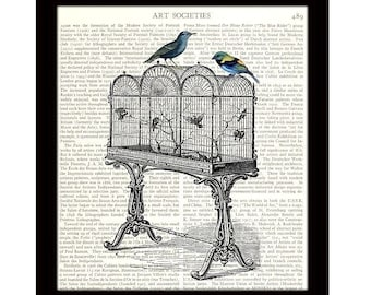 Dictionary Art Print, 8 x 10 Art Collage, Birds on Canary Cage, Victorian Illustration, Upcycled Book Page, Ready to Frame - Item 400