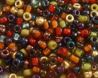8/0 Miyuki and Toho Seed Bead Mix, 25 grams, Green/Rust/Gold/Purple (0049)