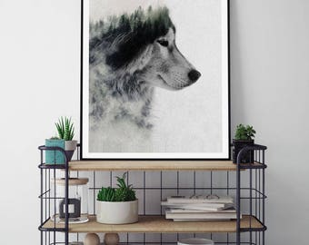 Wolf Stare by Andreas Lie Art Print