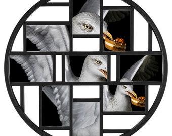 Gull Collage
