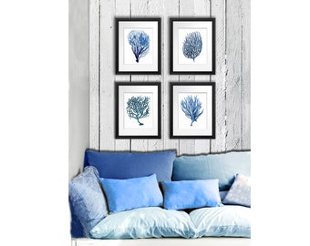 Blue Sea Coral print Set of 4 art prints, Mediterranean Decor beach decor coastal decor art antique natural history GnosisPictureArchive