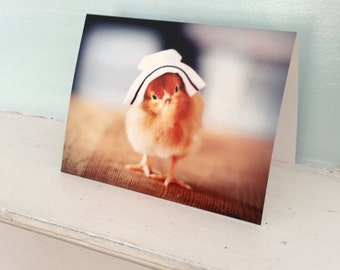 Greeting Card Chick in Nurse Cap Folded Photo Nursing Stationary Baby Animal Photography