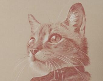 Large Pet Portrait, Animal Drawing, Sanguine, Pastel, Personalised Custom Portrait, Hand-drawn by Portrait Artist : Cat, Dog, Horse, Pet