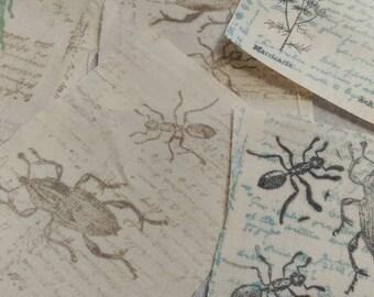 Assorted Bug Stamped Muslin Scraps