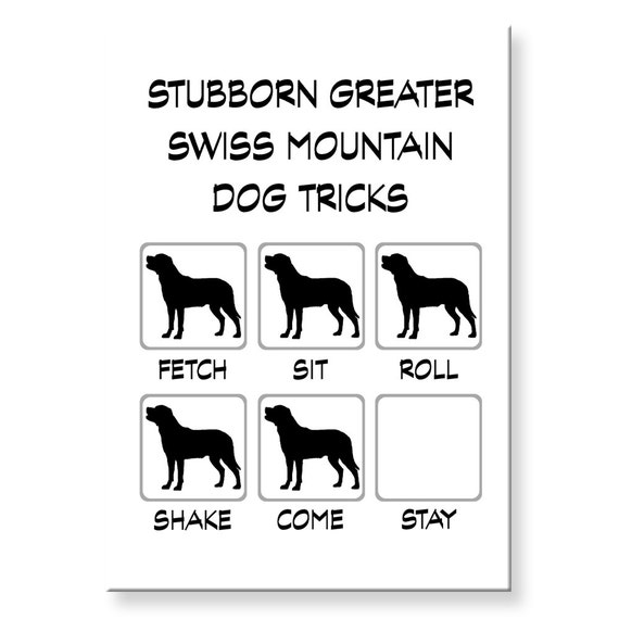 Greater Swiss Mountain Dog Stubborn Tricks Funny Fridge Magnet