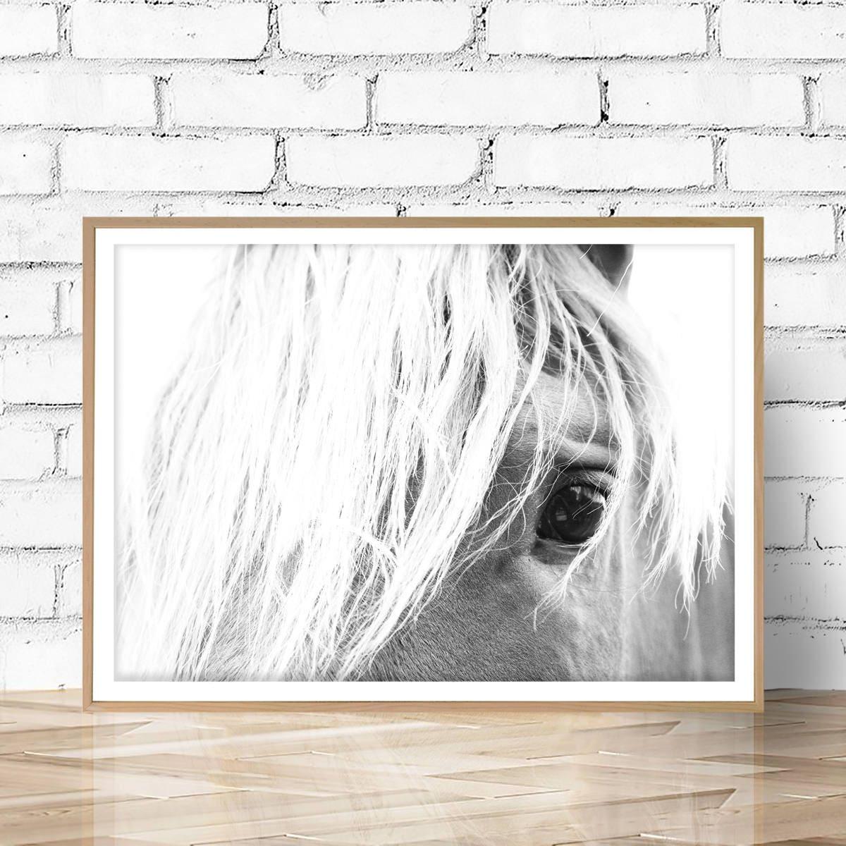 Horse print large photo wall art horse photography art zoom jeuxipadfo Gallery