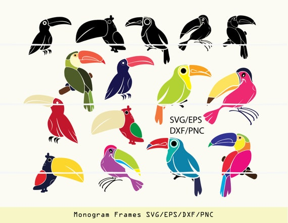 Toucan Svg, bird svg, bird clipart, bird logo, INSTANT DOWNLOAD bird ...