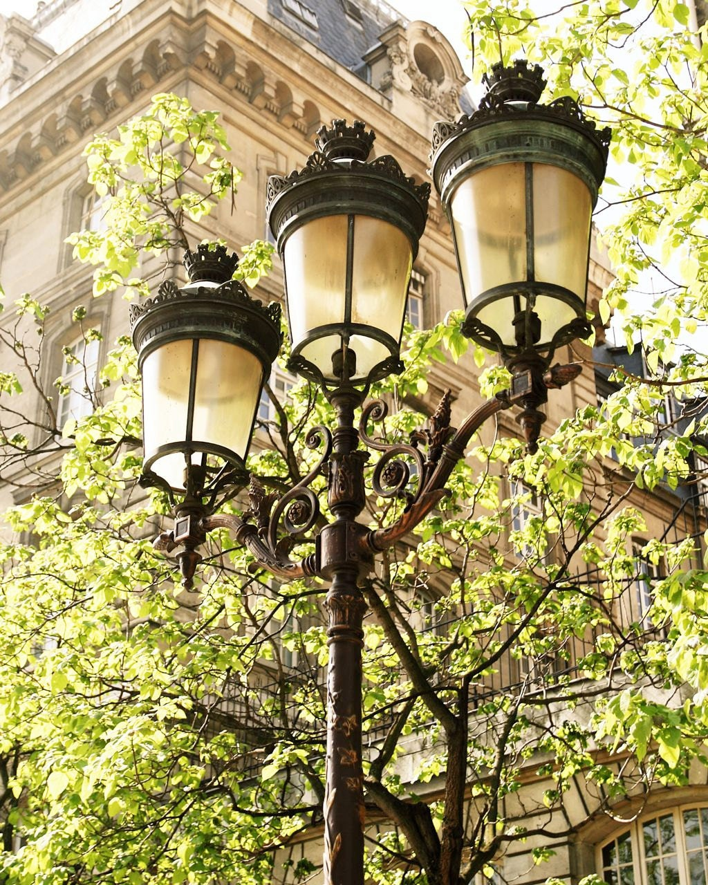 Paris Print - Lights of Paris Photography - French Decor Green Black ...