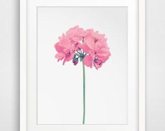 Pink Flower, Flower Art, Flowers, Floral Decor, Printable Flowers, Printable Floral, Coral Flowers, Floral Print, Floral Art, Floral Artwork