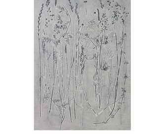 Large fine art Original nature mono print by Stef Mitchell Summer grasses Wild flowers from a Yorkshire Meadow Minimal  modern botanical art