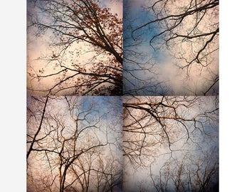 Abstract Tree Print Set, Four Print Set, Modern Wall Decor,  Tree Sky Landscape Photography, Blue White Wall Decor