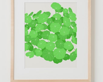 Fine Art Print. Nasturtiums. January 31, 2012.