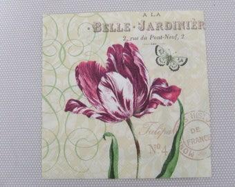 Plum Tulip towel