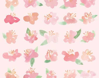 Watercolor Pink Flower - Image Download