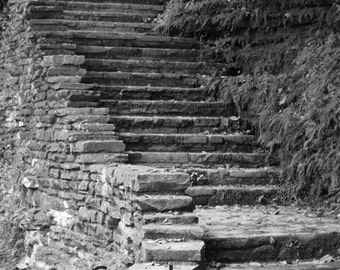 Steps Black and White
