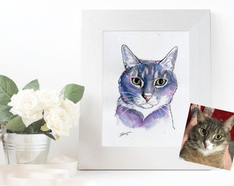 My Universe, Cat portaits.