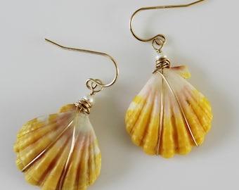 Sunrise shell earrings/goldfilled