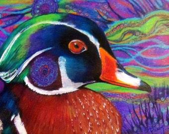 original art color  pencil drawing colorful zentangle wood duck