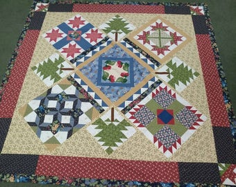 2008 Thimbleberries Club quilt top