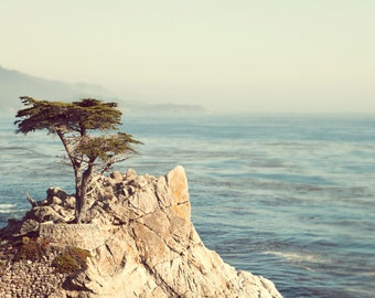 Landscape Photography, California Wall Art, Nature Photography Print, Monterey Photo, Ocean Print, Landscape Print, Lone Tree  - 17 Miles