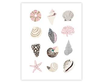 Seashell Art Print - Collage Illustration - Wall Art Print