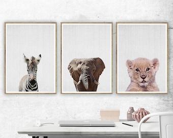 Baby Animal Nursery Art, Baby Animal Print. Baby Animal Art, Safari Animals Wall Art, Elephant Zebra Lion Set of 3 Prints, Nursery Wall Art