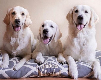 Goldens Unleashed Dog Bed *** NEW Versailles Collection *** Grey *** Large *** Custom Embroidery *** Personalize *** Lattice Bamboo