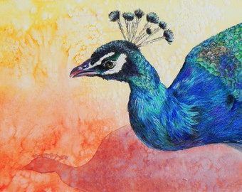 """Peacock portrait. Beautifully rendered and colored. A decorative CERAMIC TILE wall  art  - 10"""" x 8"""".  Free U.S. shipping."""