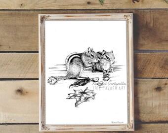 Squirrel Friends Illustration- Giclee Fine Art Print - Pen and Ink Illustration - Squirrel Drawing - Artist Rachael Caringella