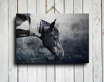 Black and White Painted Horse - Horse art - Horse decor - Horse photography - Animal photography - Paint horse art - Horse canvas
