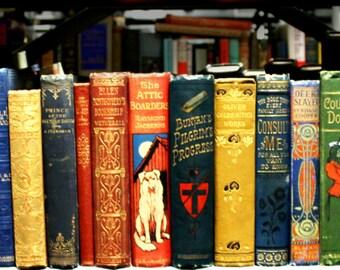 Set of 25 Antique Decorative Spine Books