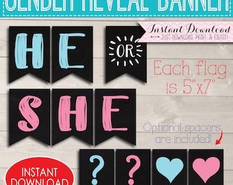 He She Gender Reveal Bunting, Printable Party Banner, Digital Boy Girl Sign Idea, Pink Blue Shower Decor Ideas, Baby Decoration Download Kit