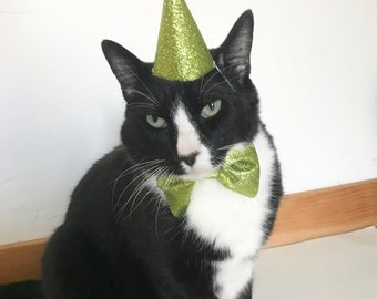 Cat Birthday Outfit Birthday Cat Gift Cat Hat Party Hat
