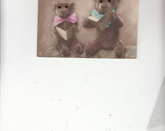 Rare Seated TwoTeddy Bears Posing- Glass Eyes Antique Postcard 1910s