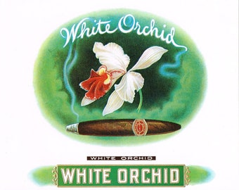 Original vintage cigar box label c1920 White Orchid Ghostly Smoke Classic Typography