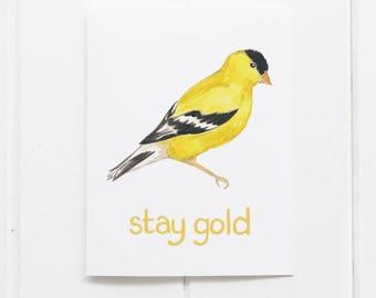 Goldfinch Card / Washington State Card / Greeting Card / Stay Gold Card / Bird Card / Pacific Northwest Card / Washington / Cascadia Card