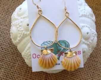 Gold dipped sunrise shell earrings
