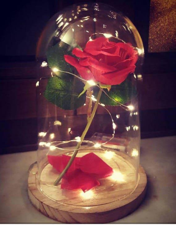 Rose Eternelle Sous Cloche La Belle Et La Bete