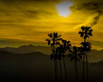 Palm Tree Silhouettes, Mountain Sunset, Palm Trees, Orange Sky, Southern California, Tropical Fine Art, Landscape Photograph