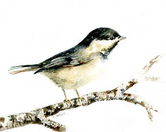 Young Chickadee Original Painting 5 x 7 Watercolor