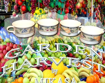 Mikasa's  Garden Harvest Cups