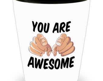 You are Awesome Funny Sarcastic Gift for friend Shot Glass Hilarious