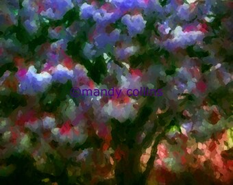 Purple Blossom Tree is an A4 fine art print of a tree with beautiful purple blossom. Fine Art Photography by Mandy Collins
