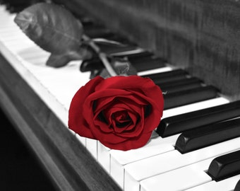 Black White Red Rose On Piano Keys, Red Wall Art, Red Picture, Red Gray Home Decor Matted Wall Art Picture