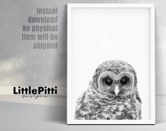 Owl print, woodlands nursery bird, black white grey, bird prints, baby owl photo, woodlands nursery animal, digital download, nursery decor
