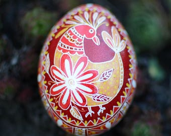 Pysanka egg with a rooster Ukrainian egg with bird, ornament easy to personalize with name and date gift ideas from Katya Trischuk