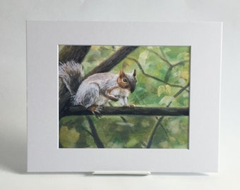 Gray squirrel in tree 8x10 archival print in 11x14 mat wildlife oil painting