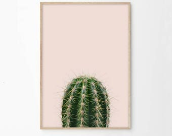 Cactus Print, Cactus Printable, Pink Green Cactus Photography Digital Download, Succulent, Dorm Room Decor Wall Art Prints Poster Print ec1c